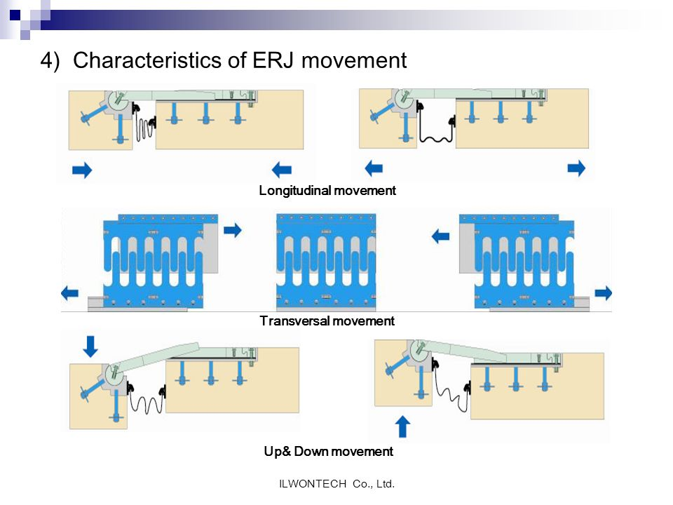 4) Characteristics of ERJ movement
