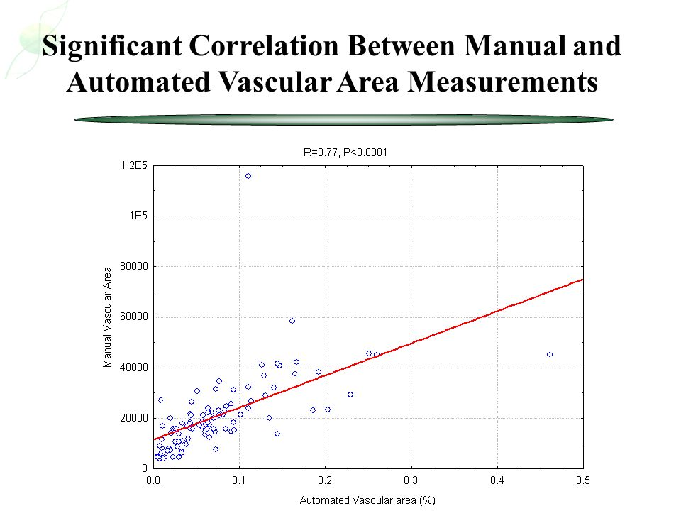 Significant Correlation Between Manual and Automated Vascular Area Measurements