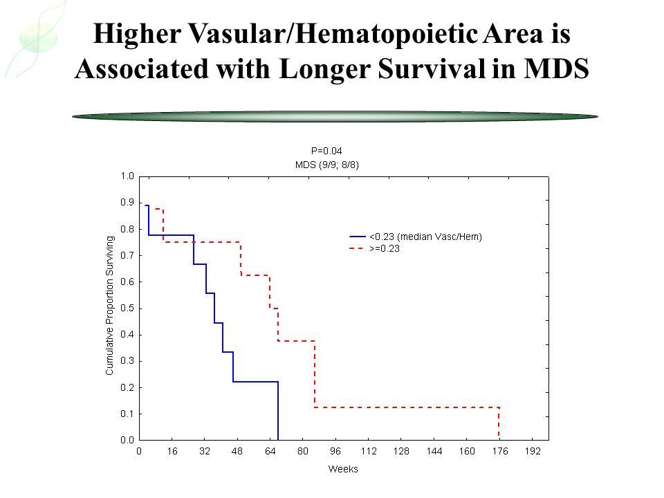 Higher Vasular/Hematopoietic Area is Associated with Longer Survival in MDS