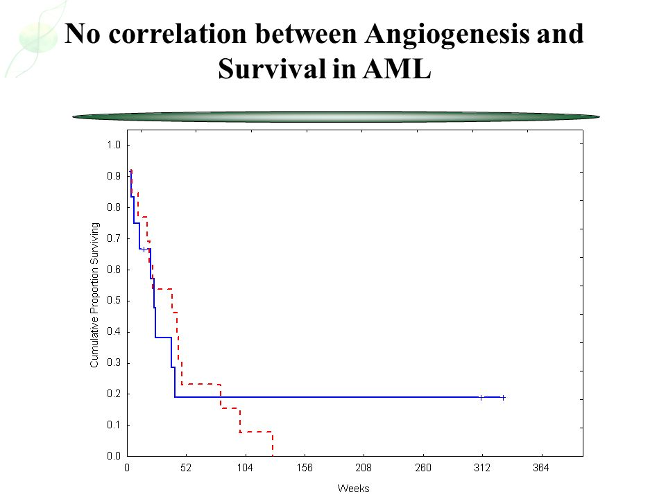 No correlation between Angiogenesis and Survival in AML