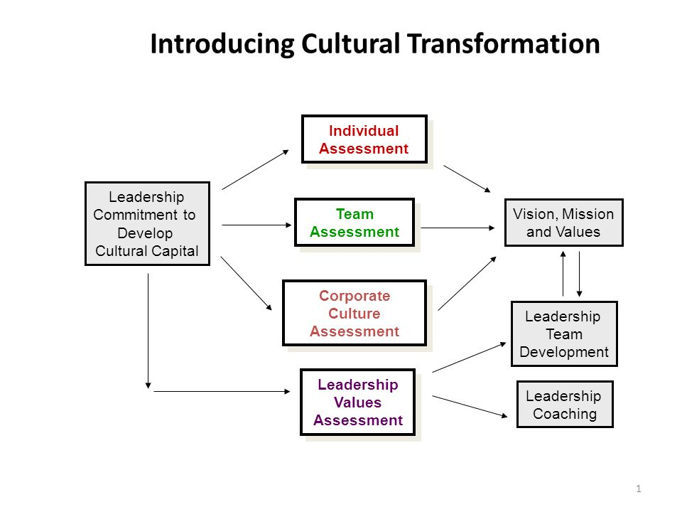 Introducing Cultural Transformation