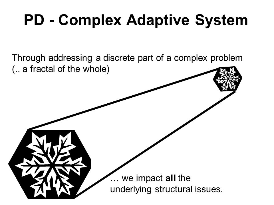 PD - Complex Adaptive System