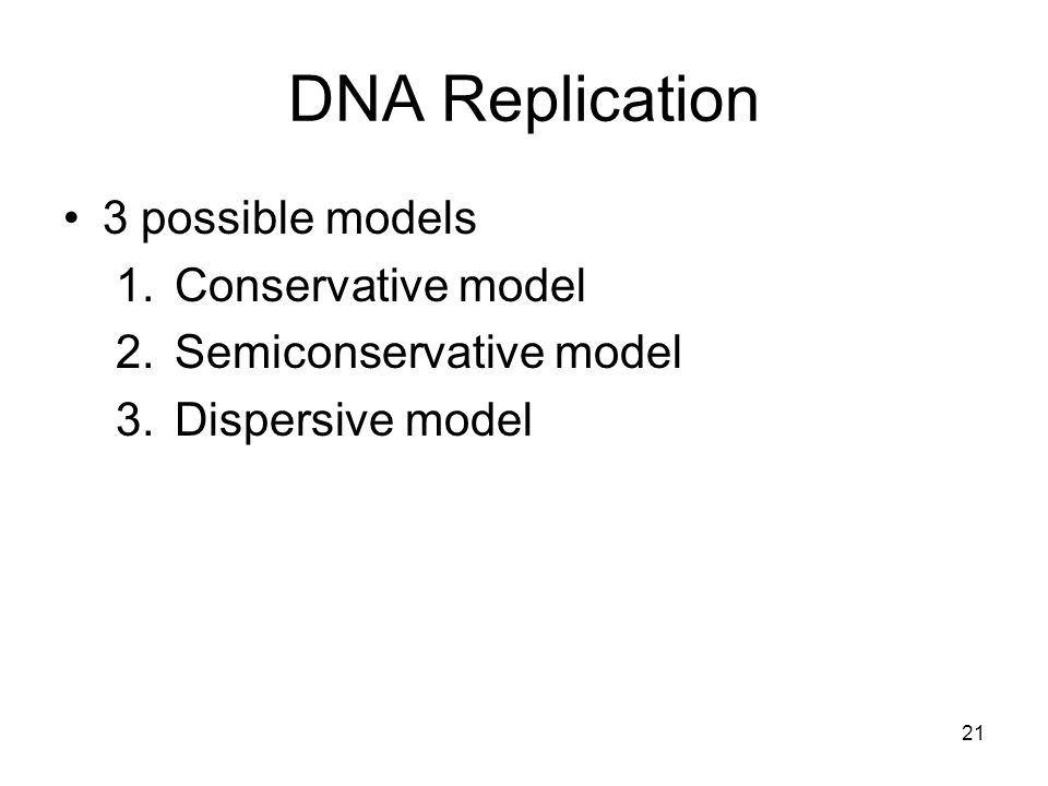DNA Replication 3 possible models Conservative model