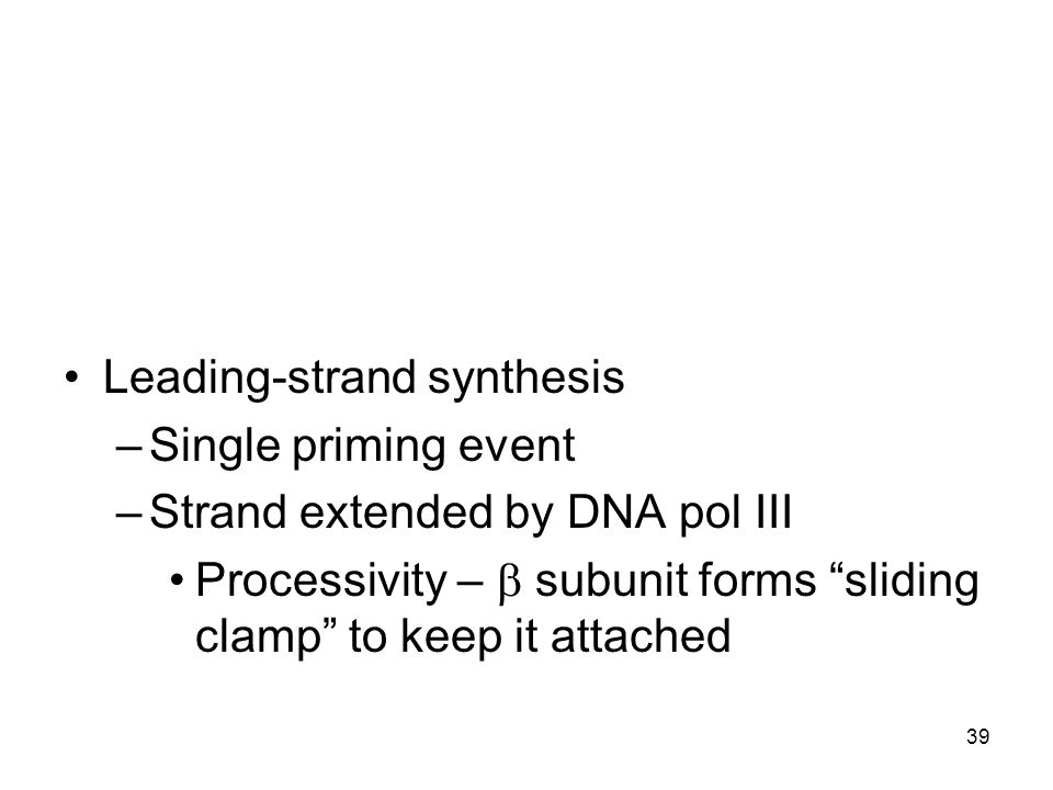 Leading-strand synthesis