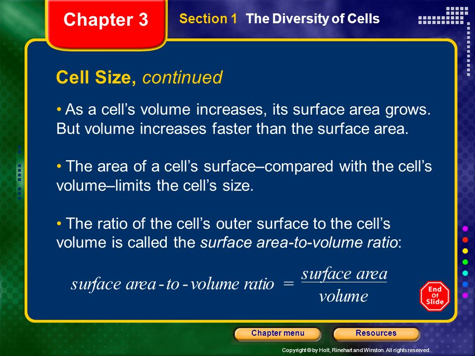 Chapter 3 Cell Size, continued s u r f a c e - t o v l m i =