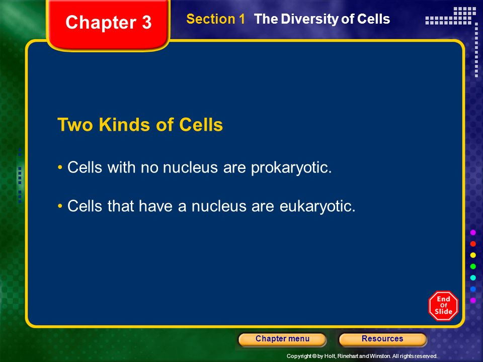 Chapter 3 Two Kinds of Cells Cells with no nucleus are prokaryotic.