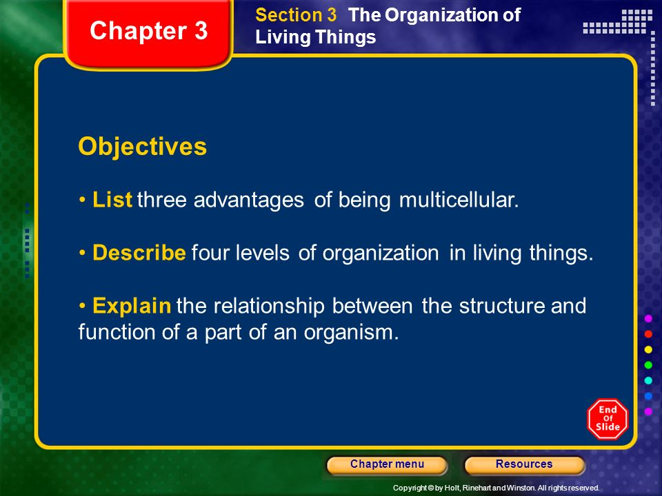 Chapter 3 Objectives List three advantages of being multicellular.