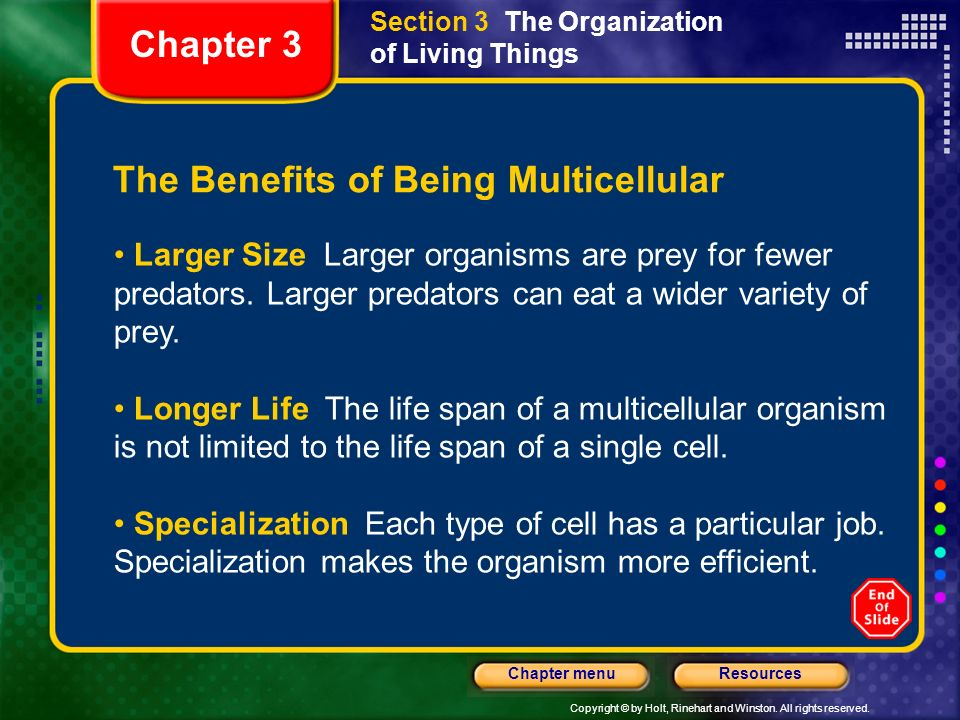 The Benefits of Being Multicellular