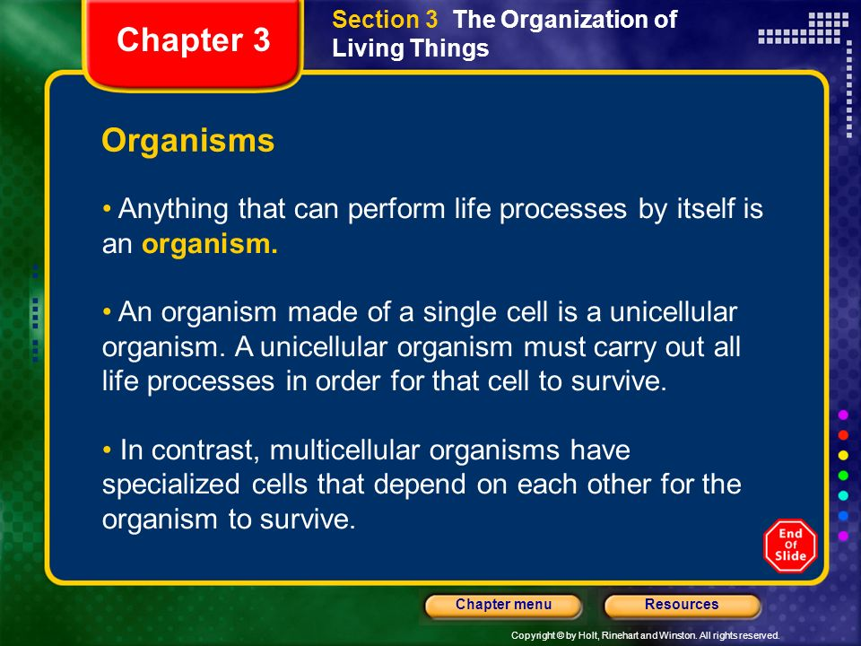 Section 3 The Organization of Living Things