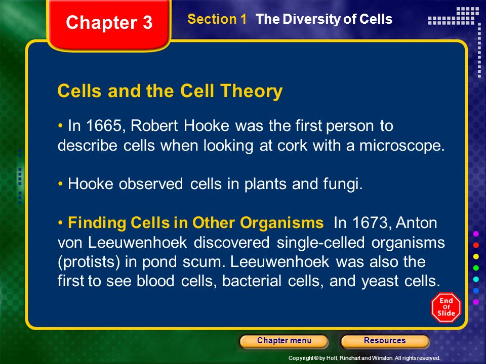Cells and the Cell Theory