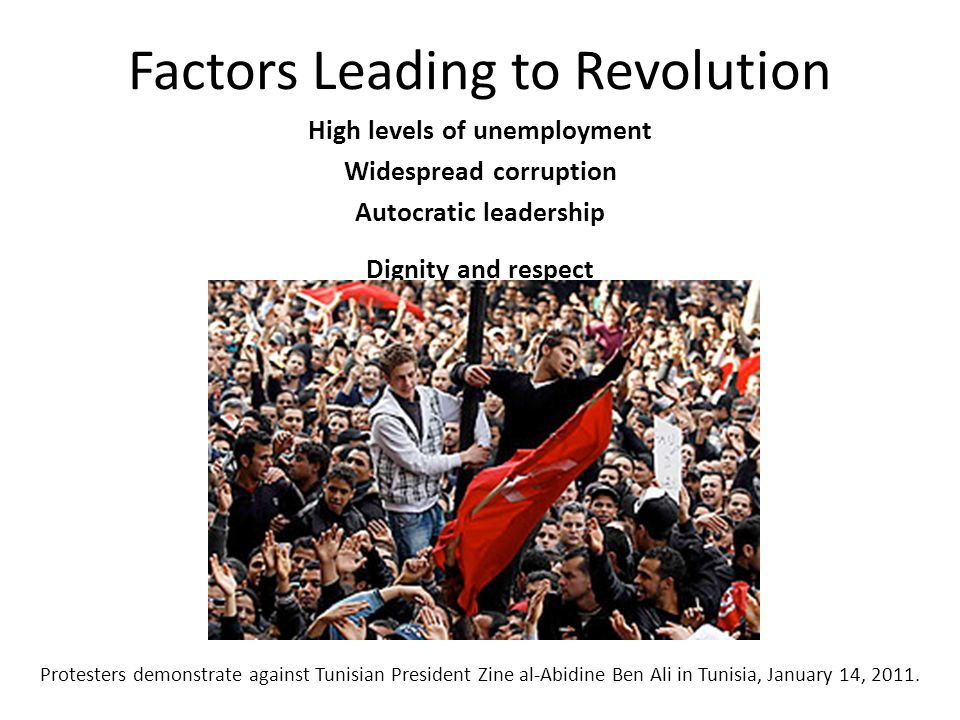 Factors Leading to Revolution