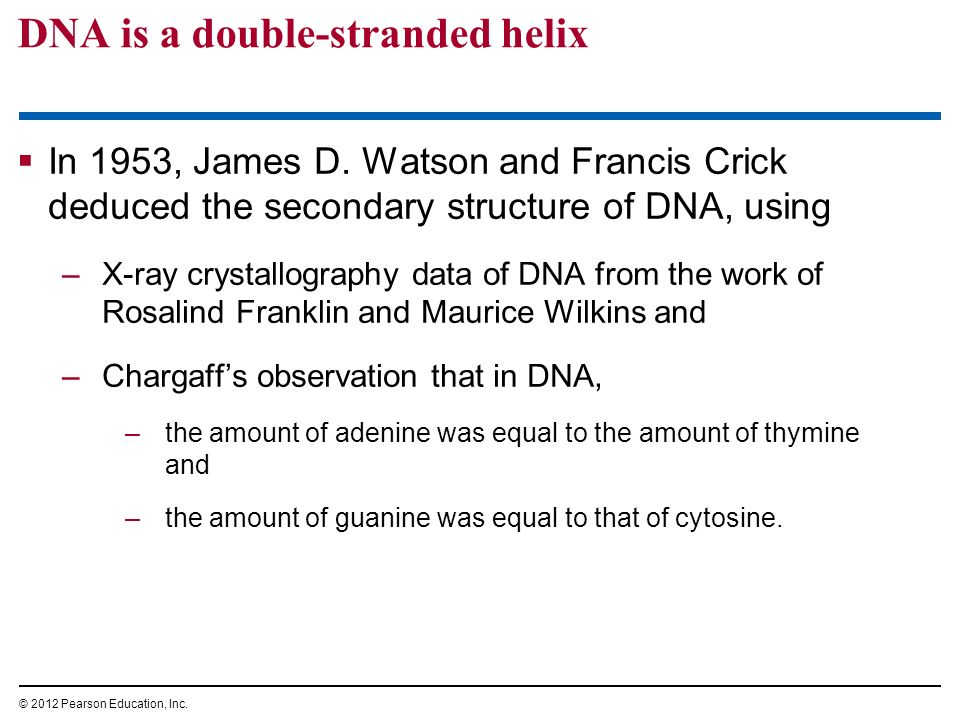 DNA is a double-stranded helix