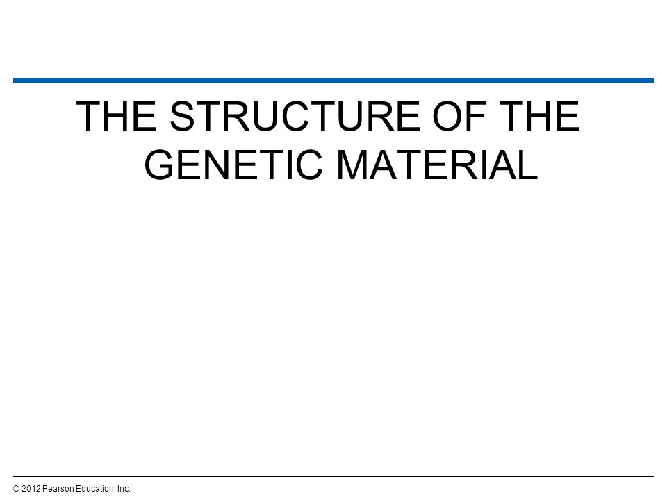 THE STRUCTURE OF THE GENETIC MATERIAL