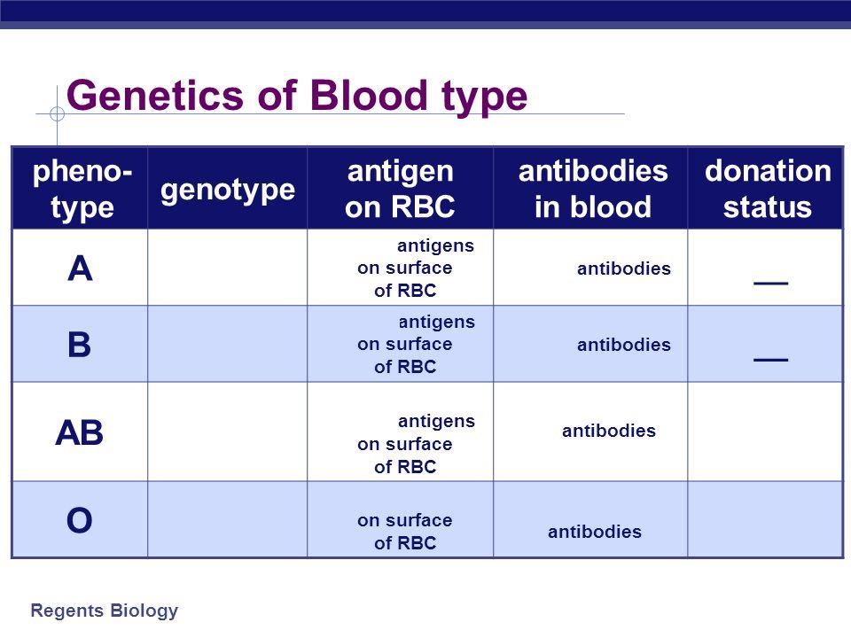 Genetics of Blood type A A A or A i B BB or B i AB O i i pheno-type