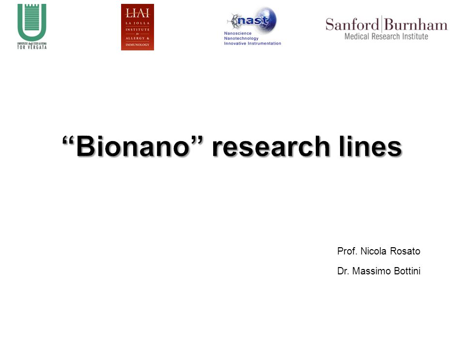 Bionano research lines
