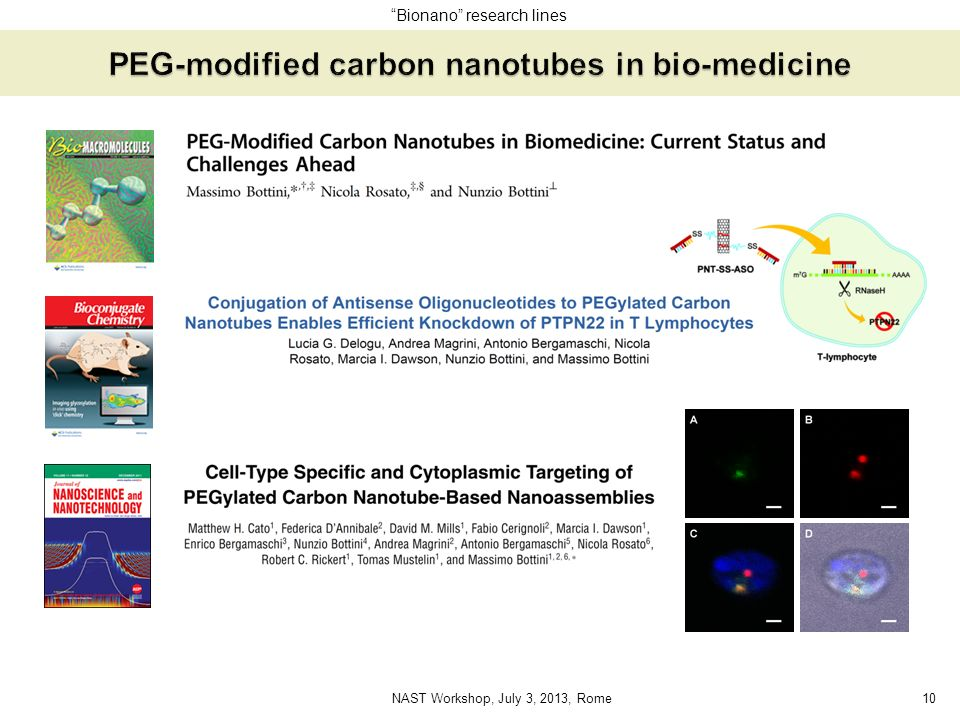 PEG-modified carbon nanotubes in bio-medicine