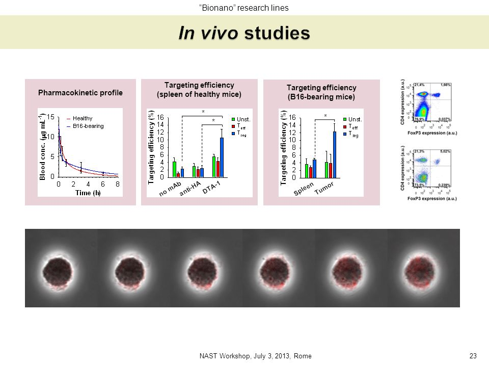 In vivo studies Bionano research lines