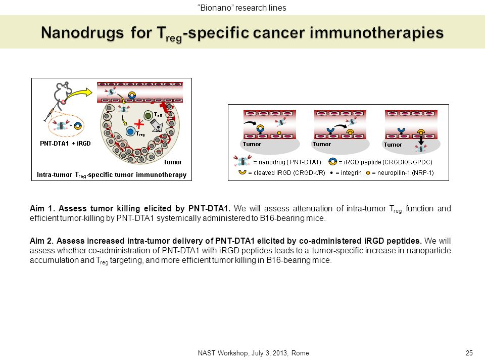 Nanodrugs for Treg-specific cancer immunotherapies