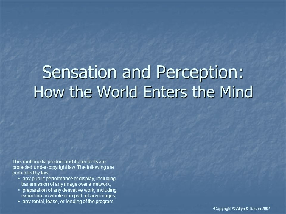 Sensation and Perception: How the World Enters the Mind
