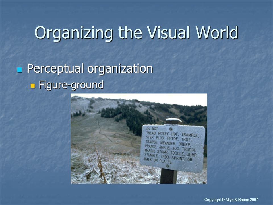 Organizing the Visual World