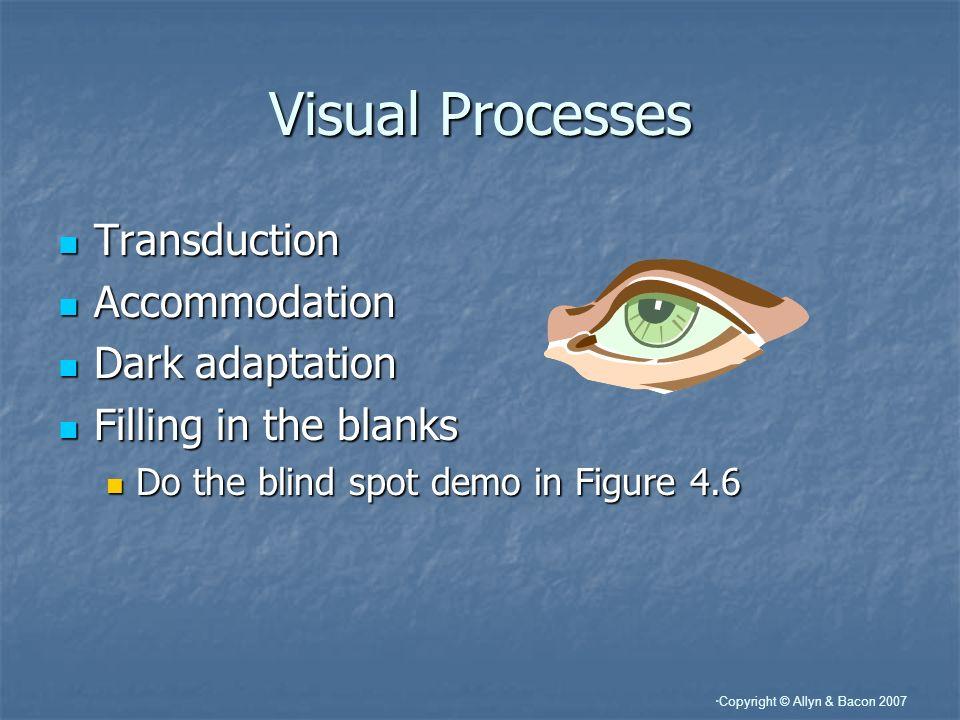 Visual Processes Transduction Accommodation Dark adaptation