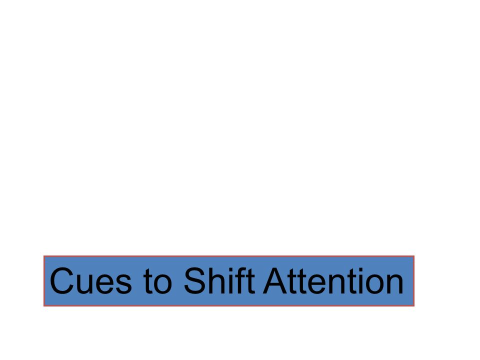 Cues to Shift Attention