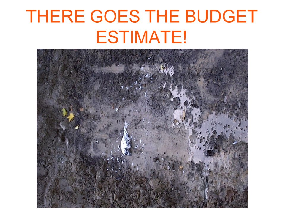 THERE GOES THE BUDGET ESTIMATE!