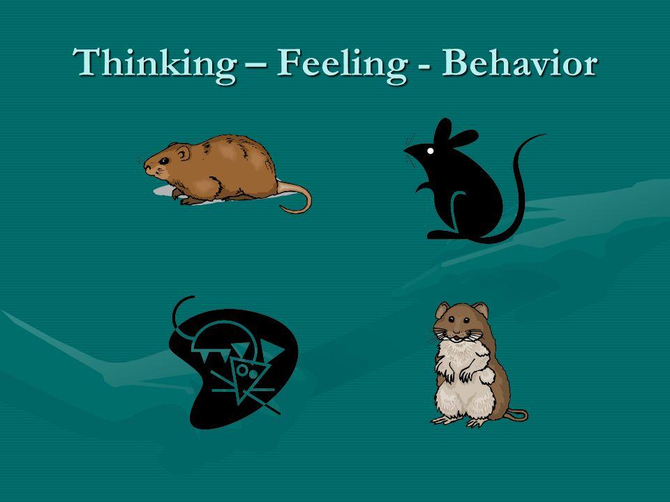Thinking – Feeling - Behavior