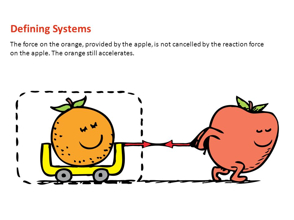 Defining Systems The force on the orange, provided by the apple, is not cancelled by the reaction force on the apple.