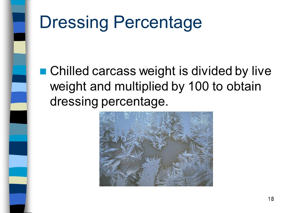 Dressing Percentage Chilled carcass weight is divided by live weight and multiplied by 100 to obtain dressing percentage.