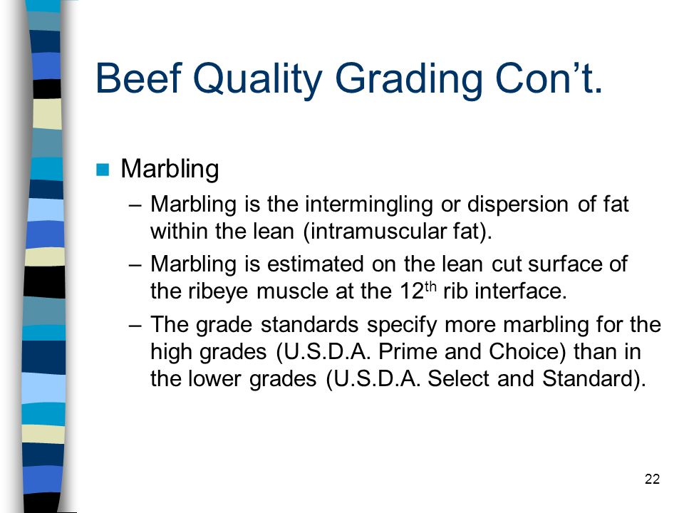 Beef Quality Grading Con't.