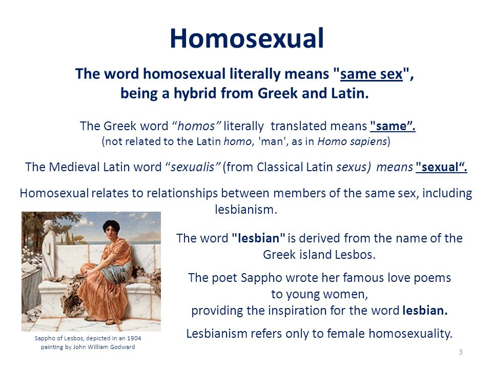 Homosexual The word homosexual literally means same sex , being a hybrid from Greek and Latin.