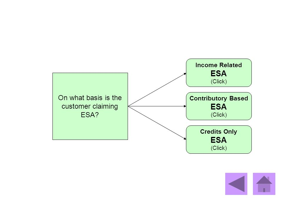 ESA ESA ESA On what basis is the customer claiming ESA Income Related