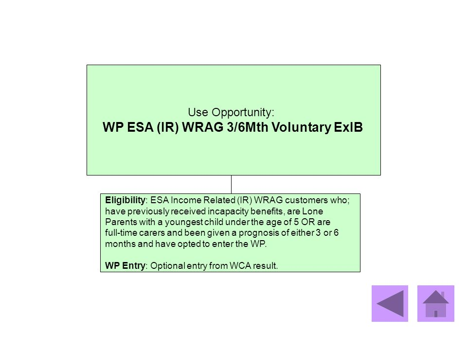 WP ESA (IR) WRAG 3/6Mth Voluntary ExIB