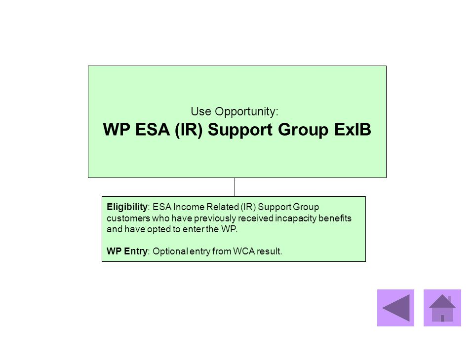 WP ESA (IR) Support Group ExIB