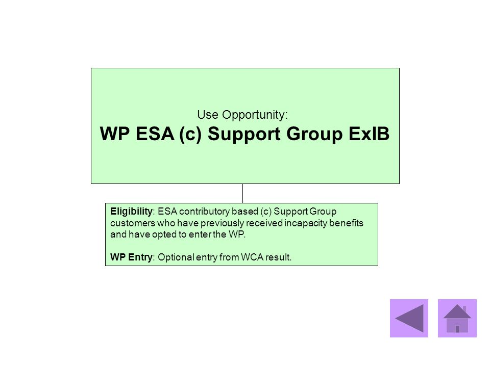 WP ESA (c) Support Group ExIB