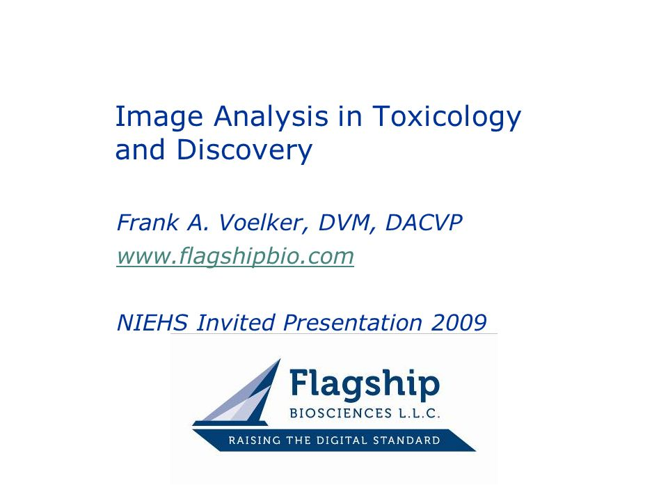Image Analysis in Toxicology and Discovery