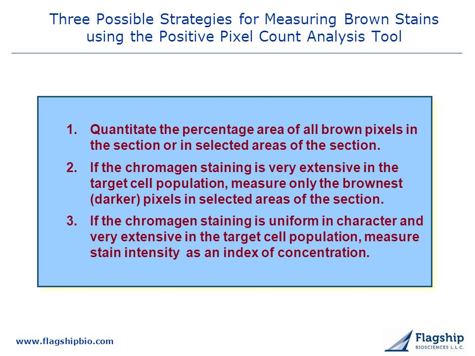 3/25/2017 Three Possible Strategies for Measuring Brown Stains using the Positive Pixel Count Analysis Tool.