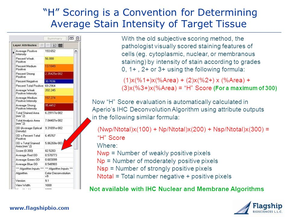 3/25/2017 H Scoring is a Convention for Determining Average Stain Intensity of Target Tissue.
