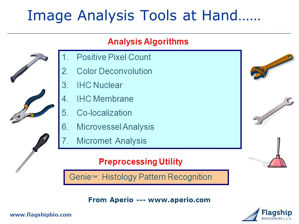 Image Analysis Tools at Hand……