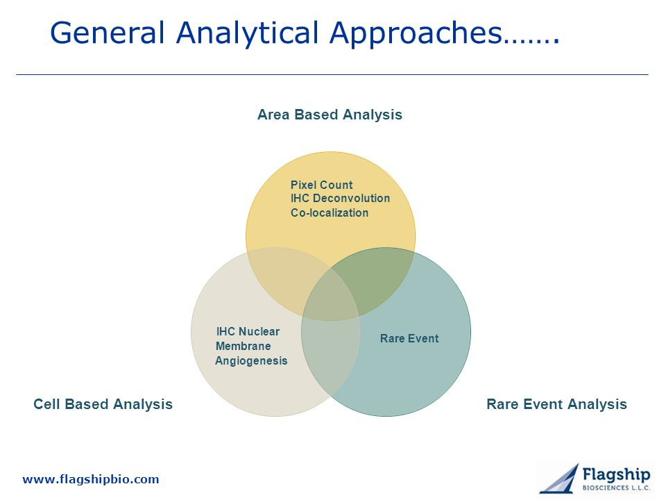 General Analytical Approaches…….