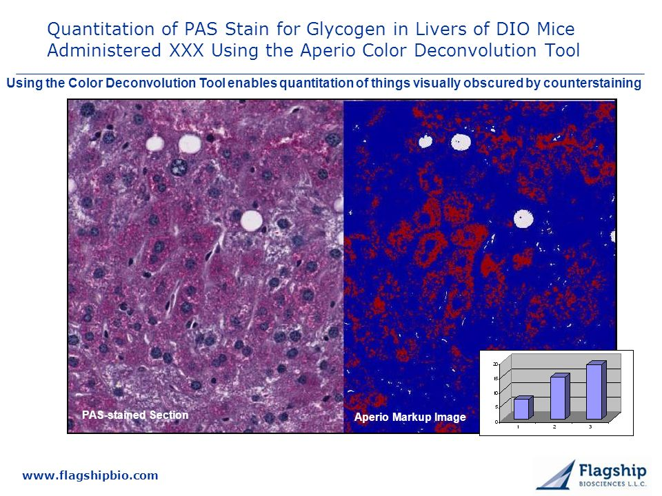 3/25/2017 Quantitation of PAS Stain for Glycogen in Livers of DIO Mice Administered XXX Using the Aperio Color Deconvolution Tool.