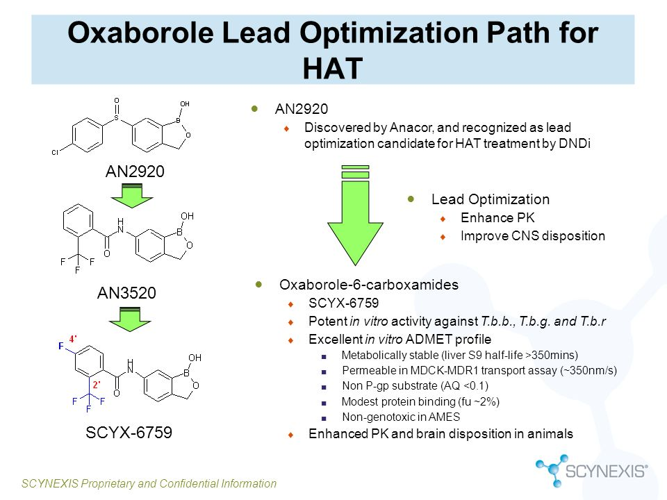 Oxaborole Lead Optimization Path for HAT