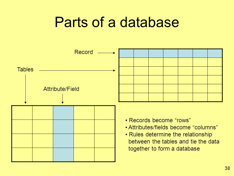 Parts of a database Record Tables Attribute/Field