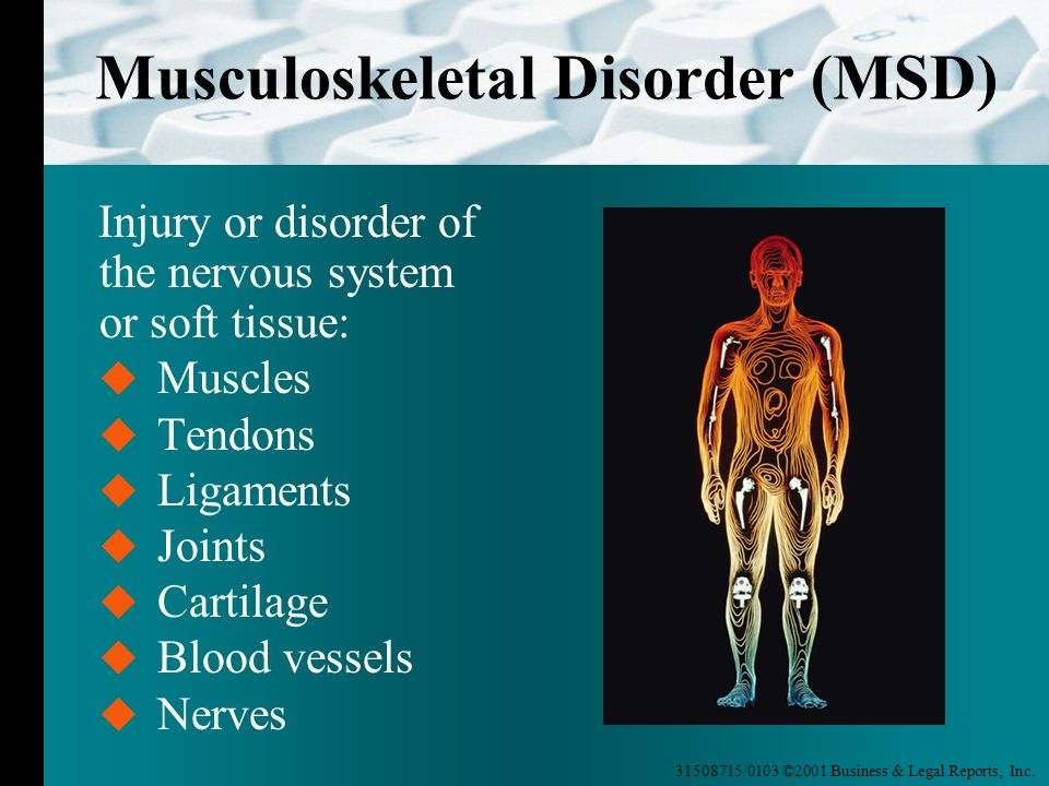 Musculoskeletal Disorder (MSD)