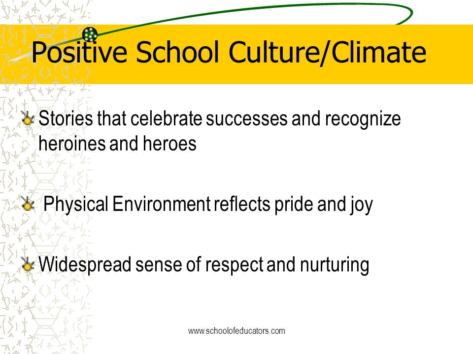 Positive School Culture/Climate