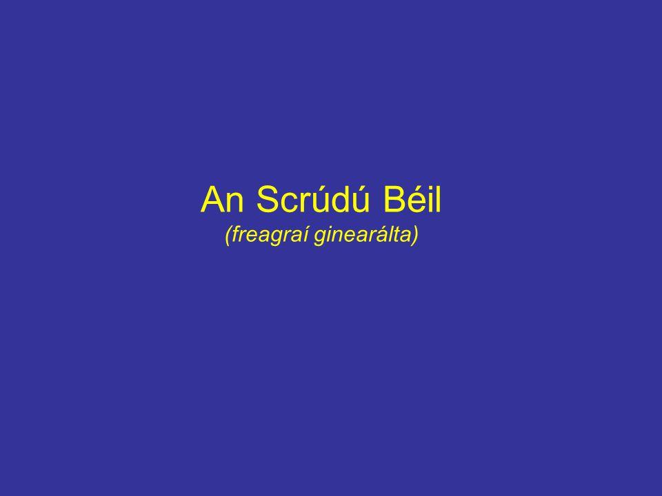 An Scrúdú Béil (freagraí ginearálta)