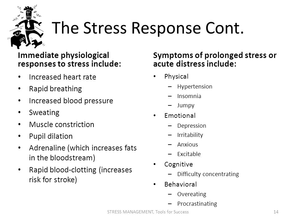 The Stress Response Cont.