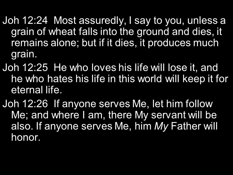 Joh 12:24 Most assuredly, I say to you, unless a grain of wheat falls into the ground and dies, it remains alone; but if it dies, it produces much grain.