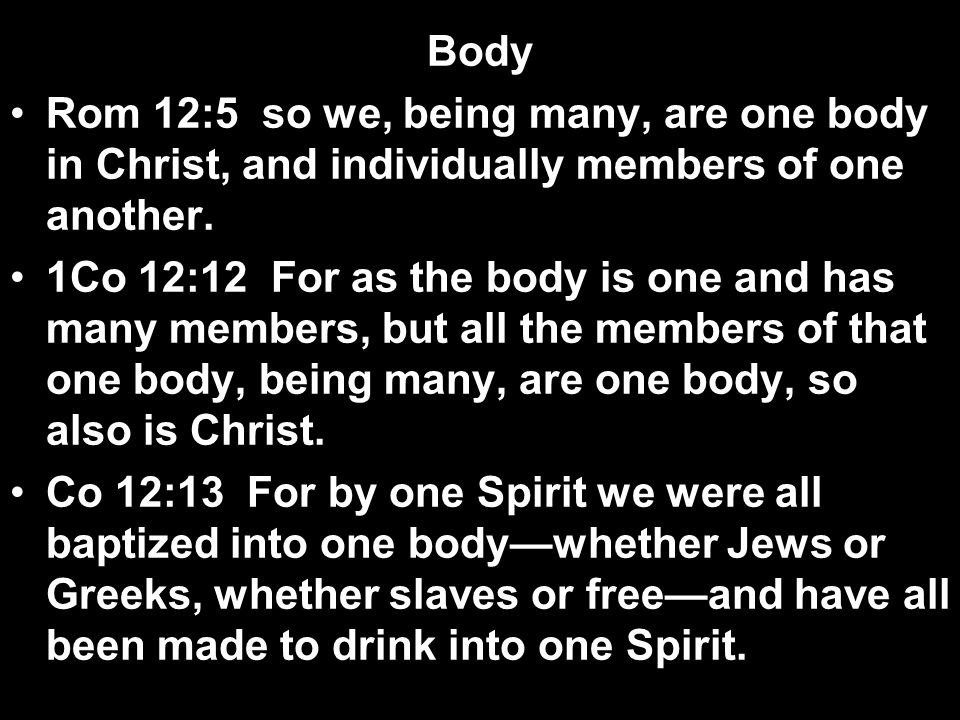 Body Rom 12:5 so we, being many, are one body in Christ, and individually members of one another.